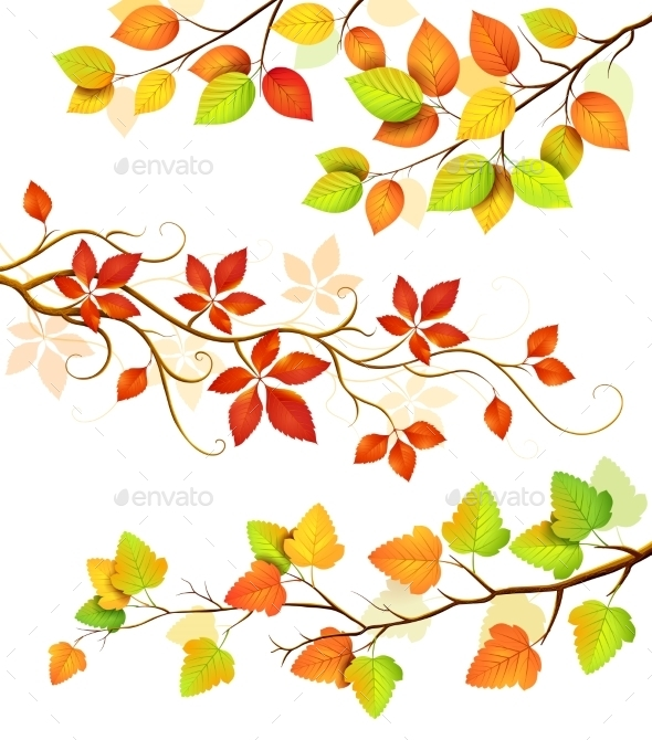 GraphicRiver Collection Of Autumn Leaves 11458088