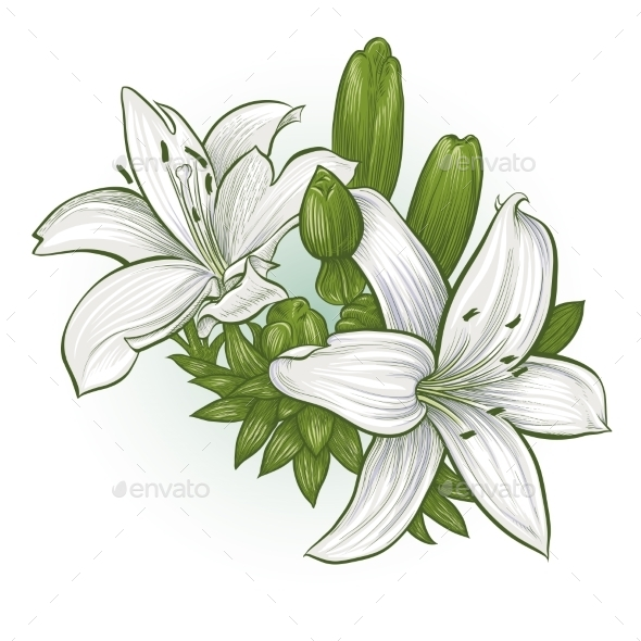 GraphicRiver Flowers Lilies 11458315