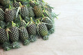 Pineapples at fruit market in Thailand - PhotoDune Item for Sale