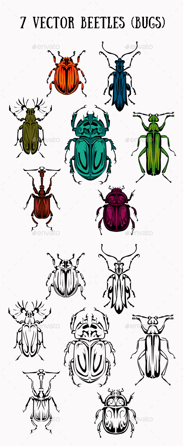GraphicRiver Seven Vector Beetles 11457879