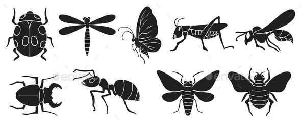 GraphicRiver A Group of Insects 11466850