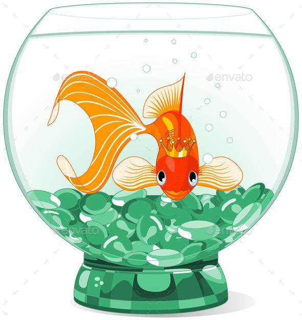GraphicRiver Goldfish in the Aquarium 11466958