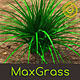 MaxGrass - 3DOcean Item for Sale
