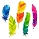 Set Of Abstract Bright Transparent Feathers - GraphicRiver Item for Sale