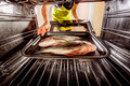 Cooking Dorado fish in the oven. - PhotoDune Item for Sale