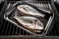 Dorado fish in the oven. - PhotoDune Item for Sale