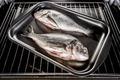 Dorado fish in the oven. - PhotoDune Item for Sale