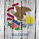 Illinois State Flag Grunge Background - PhotoDune Item for Sale
