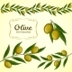 Vector Collection Of Olive Branch, Green Olives - GraphicRiver Item for Sale