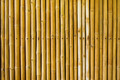 bamboo fence - PhotoDune Item for Sale