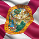 US state flag of Florida - PhotoDune Item for Sale