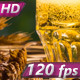 Concept of the Production of Beer - VideoHive Item for Sale