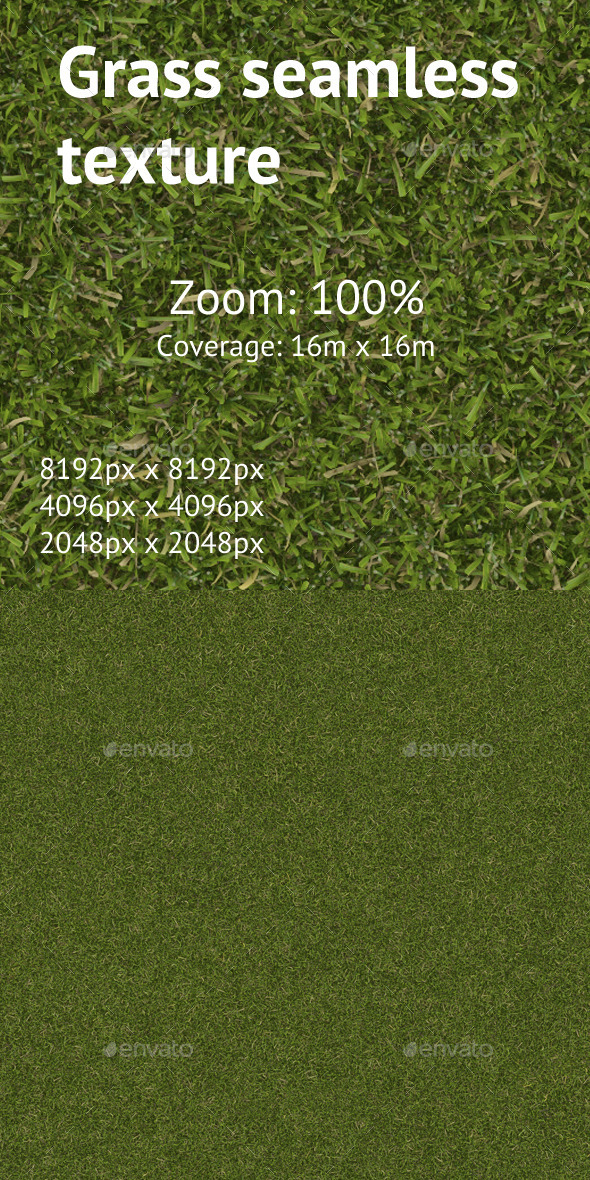 3DOcean Seamless texture of the lawn grass 11461404