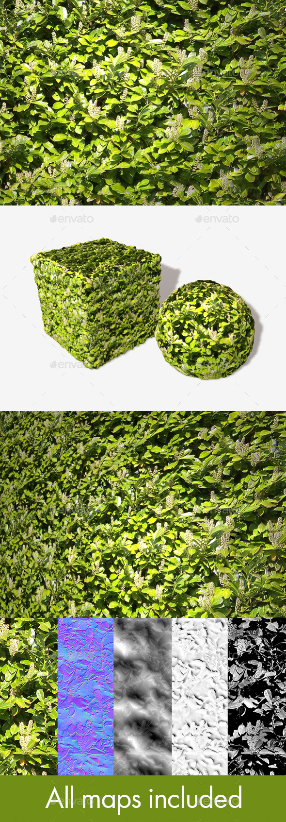 3DOcean White Flowering Bush Seamless Texture 11493650