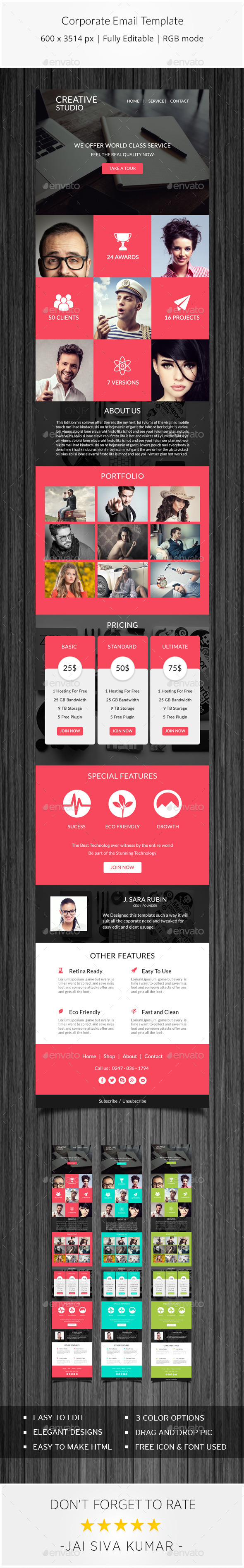 GraphicRiver Corporate Email Template 11493699