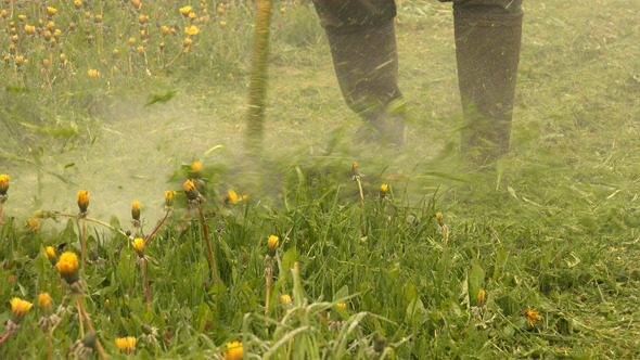 VideoHive Grass Trimmer 11493983