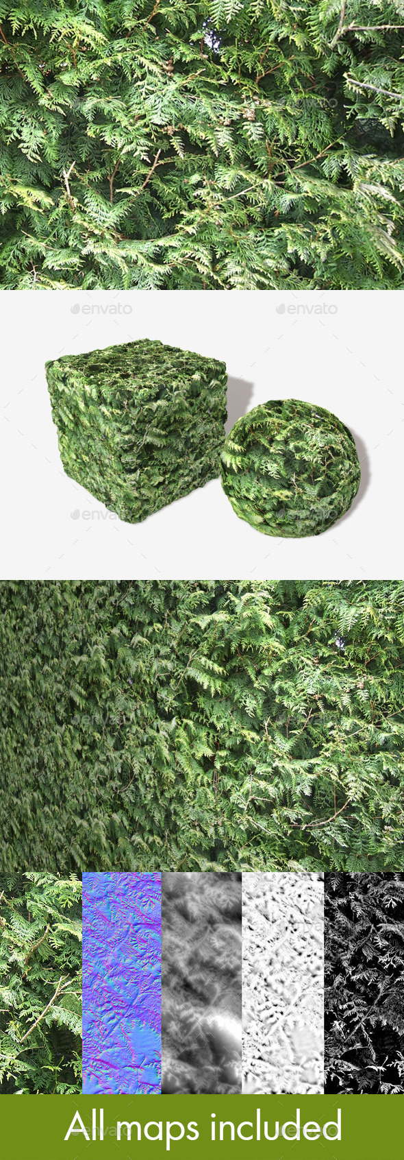 Fir Tree Seamless Texture - 3DOcean Item for Sale
