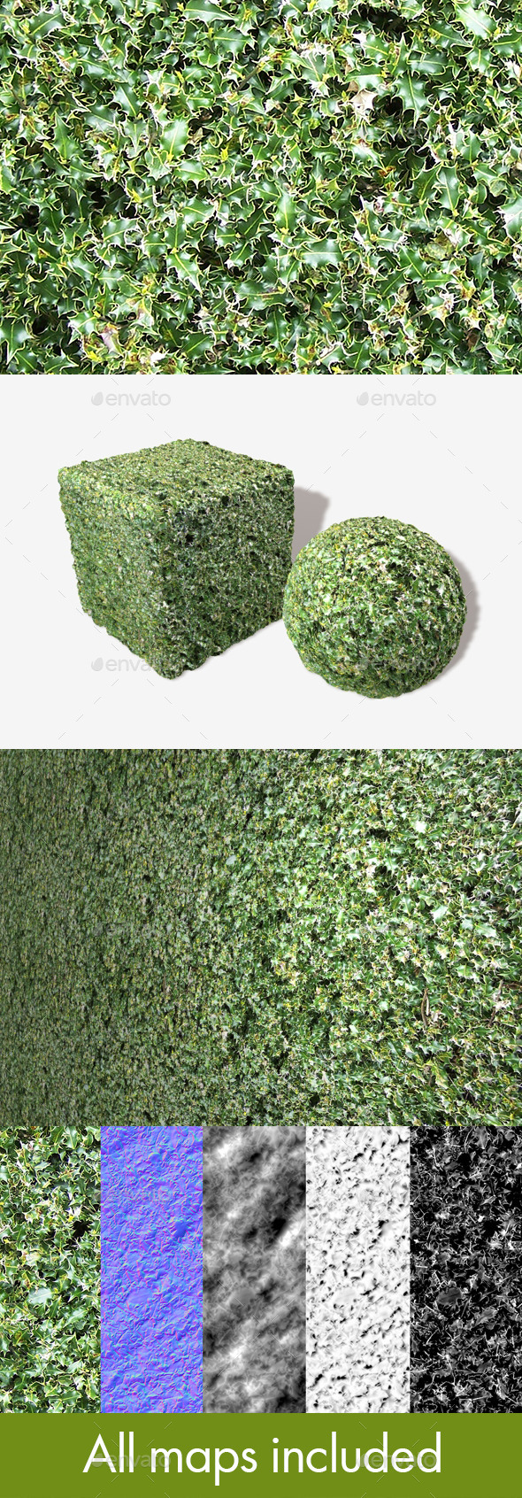 3DOcean Holly Seamless Texture 11494729