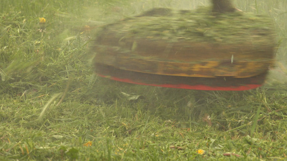 VideoHive Grass Trimmer 11496211