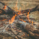 Fire Flame wooden camp burning Outdoor travel vacations concept moody background - PhotoDune Item for Sale