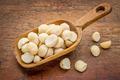 scoop of macadamia nuts - PhotoDune Item for Sale