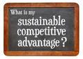 sustainable competitive advantage concept - PhotoDune Item for Sale