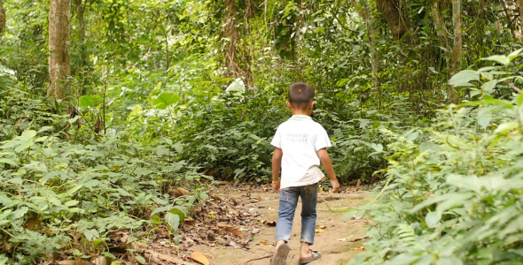 Little Boy Walking On Wooded Trail