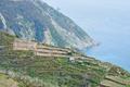 ligurian coast line - PhotoDune Item for Sale