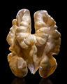 walnut - PhotoDune Item for Sale