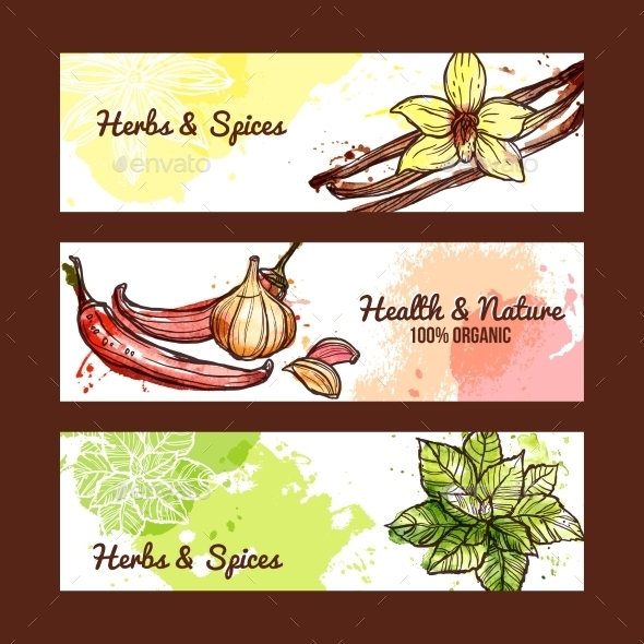 GraphicRiver Herbs and Spices Banners 11513775