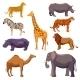 Africa Animal Decorative Set - GraphicRiver Item for Sale