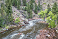 Cache la Poudre River in Rocky Mountains - PhotoDune Item for Sale