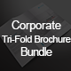 Corporate Tri-fold Brochure Bundle - GraphicRiver Item for Sale