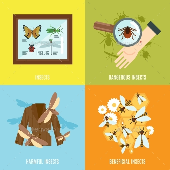 GraphicRiver Insects Flat Set 11524818