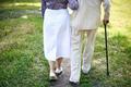Walking seniors - PhotoDune Item for Sale