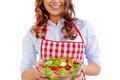 Vegetarian food - PhotoDune Item for Sale