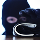 Criminal Steals a Wallet - VideoHive Item for Sale