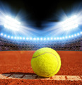 Tennis ball - PhotoDune Item for Sale