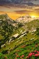 Triglav National Park at sunset - PhotoDune Item for Sale