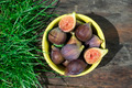 Figs in yellow bowl - PhotoDune Item for Sale