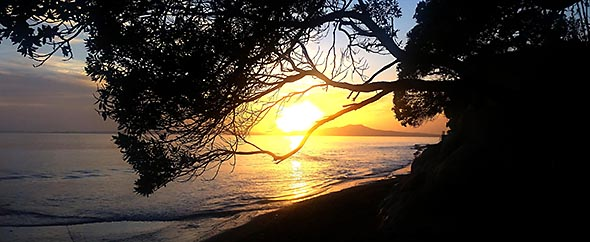 Mairangi%20bay%20beach%20walk%20590-242