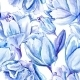 Blue Watercolor Tulip Pattern - GraphicRiver Item for Sale