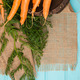 Carrots on a wooden table - PhotoDune Item for Sale