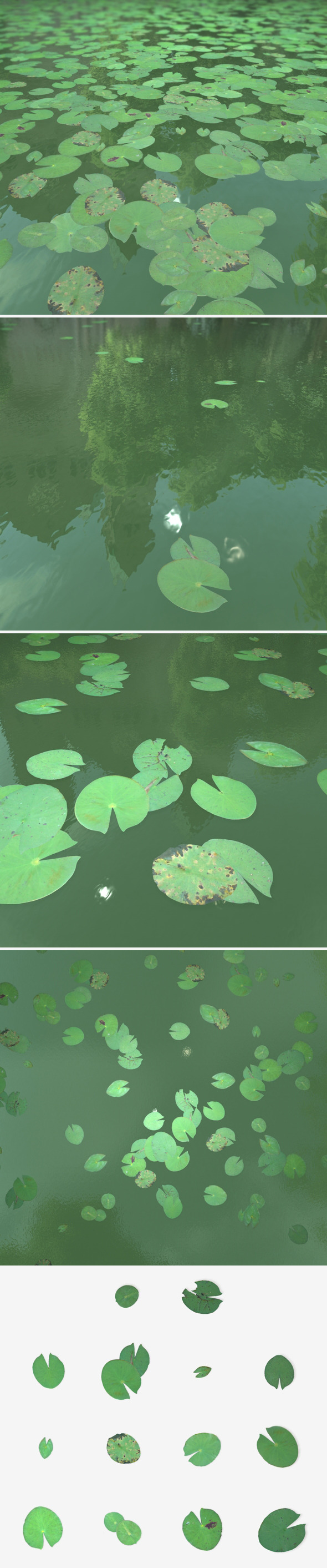 Lily Pads - 3DOcean Item for Sale