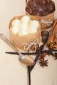 chocolate vanilla and spices cream cake dessert - PhotoDune Item for Sale