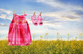 Dress and sandals on clothesline in summer - PhotoDune Item for Sale