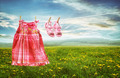 Dress and sandals on clothesline in fields of dandelions - PhotoDune Item for Sale