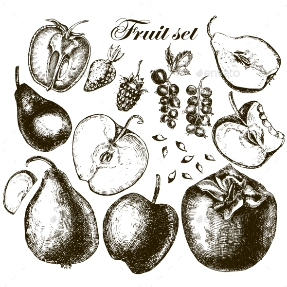 GraphicRiver Set of Fruits 11557496