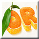 Time Citrus 3D Styles - GraphicRiver Item for Sale