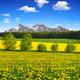 Spring mountain landscape - PhotoDune Item for Sale